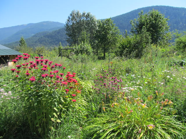 Spiral News by Kootenay Permaculture